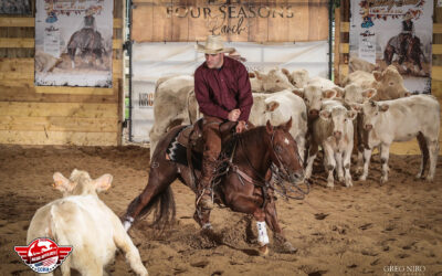 Concours de Cutting – équitation western